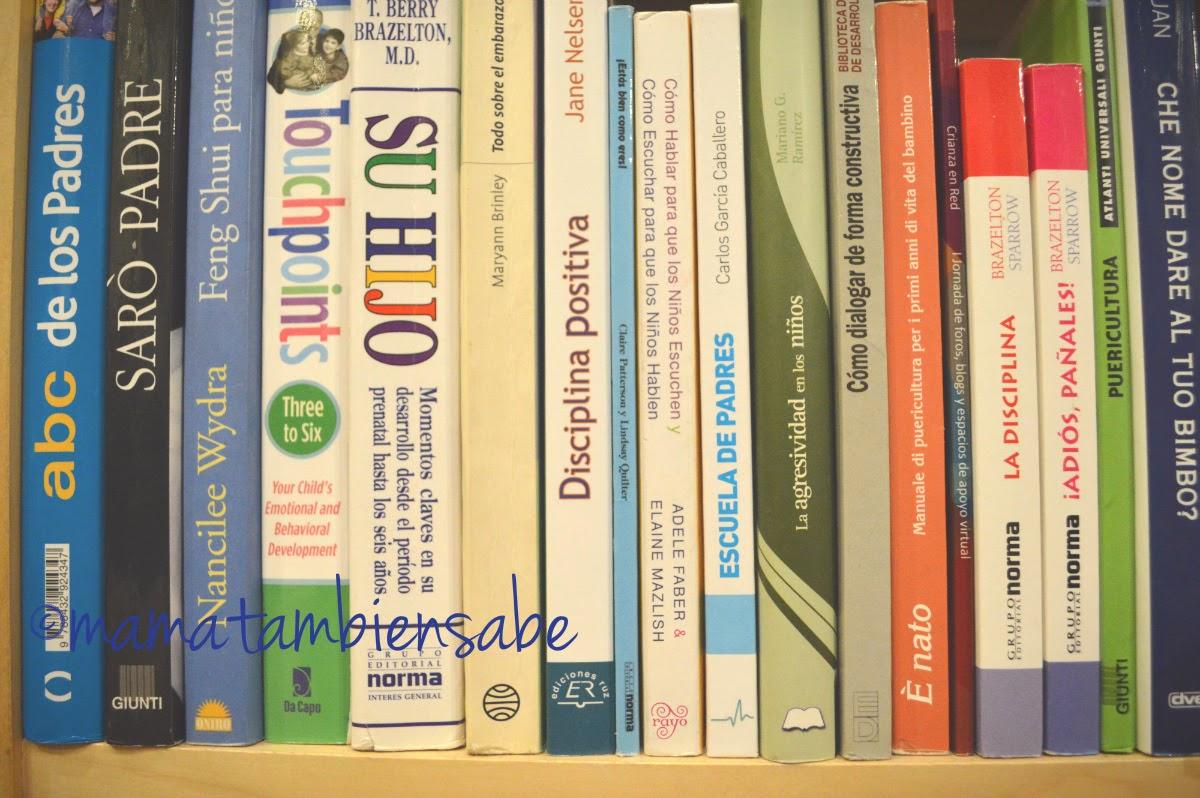 Hay mucha literatura sobre educación, crianza y parentalidad - casi como manuales