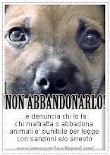 NON ABBANDORARE IL TUO MIGLIOR AMICO!!