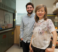 Karl Koehler and Eri Hashino, Ph.D.