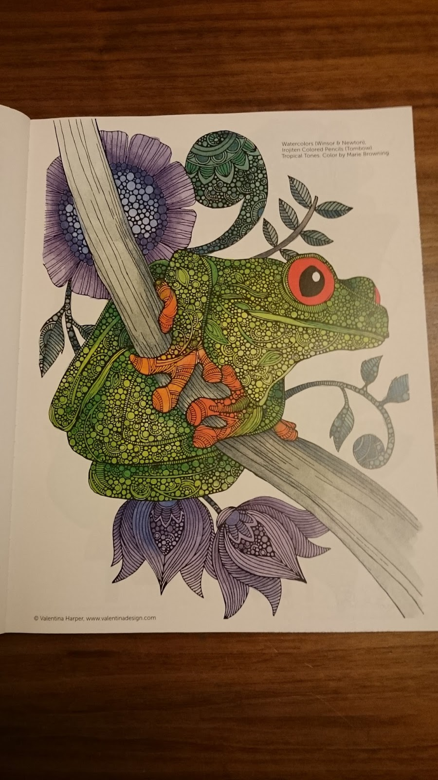 Creative Coloring Animals Book Review Crochet Addict UK