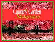 Country Garden Showcase