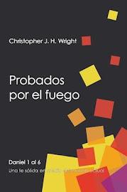 PROBADOS POR EL FUEGO - CHRISTOPHER J. H. WRIGHT