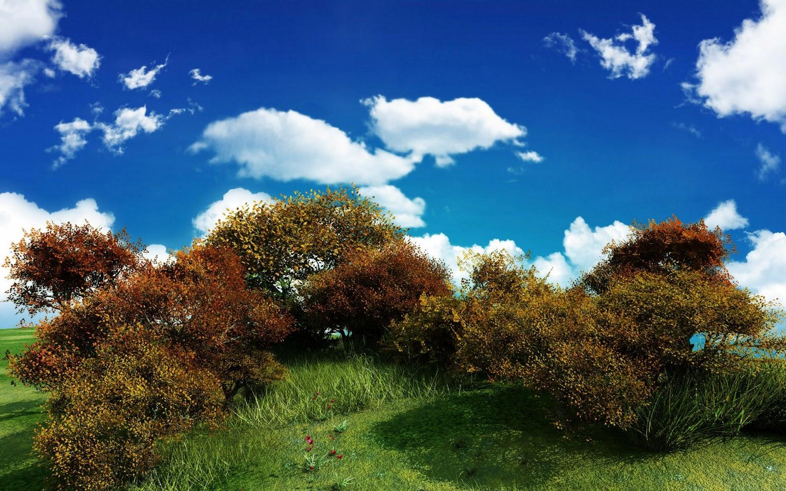 Rosen Hintergrundbilder HD Hintergrundbilder - Hintergrundbilder Nature Hd