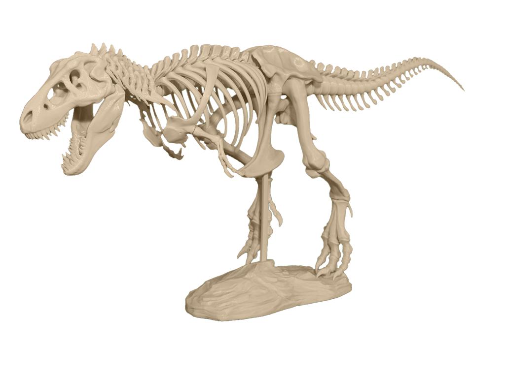 ESCANEADO 3D: Imprime tu esqueleto de dinosaurio