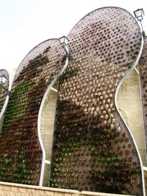 jardines verticales, muros verdes, greenwalls dañados foto 5