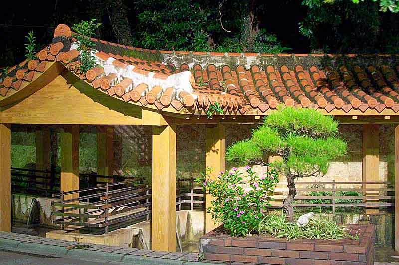 Tiled roof over speing with small pine tree