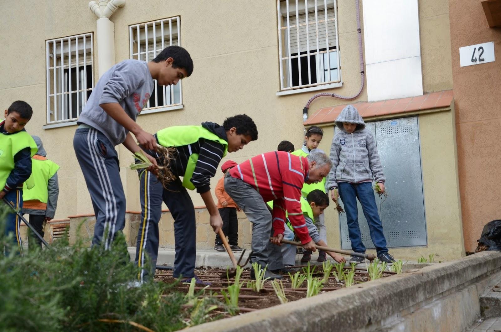 Avv montserrat curso de jardineria para gente joven for Curso de jardineria