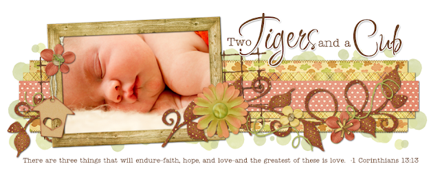 Two Tigers and a Cub Blog Design