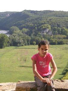 Castelnaud et Fayrac vue du château de Beynac