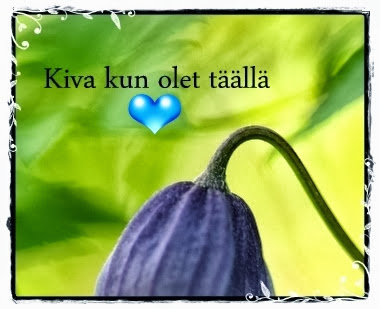 Sain tämän Vironperän Ireneltä, sekä Perennapuutarhurin blogin Heidi-Maarialta!