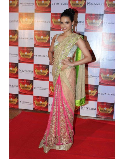 Buy online model jhataleka malhotra in saree