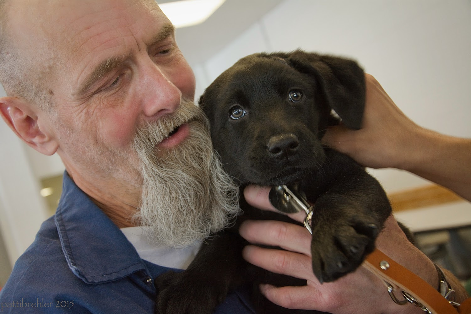 This is a close up shot of the man dressed in blue holding the puppy close to his face. The man is looking down at the puppy and the puppy is looking at the camear. Someone else's hand is petting the puppy behind his left ear from the right. The puppy's left paw is stretched out toward the camera.