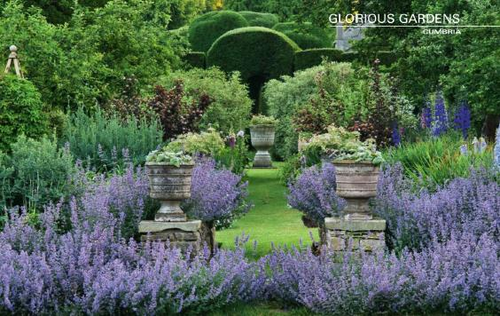 famous english gardens visit topiary garden at levens