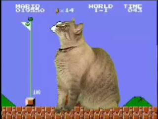 cat play super mario bros