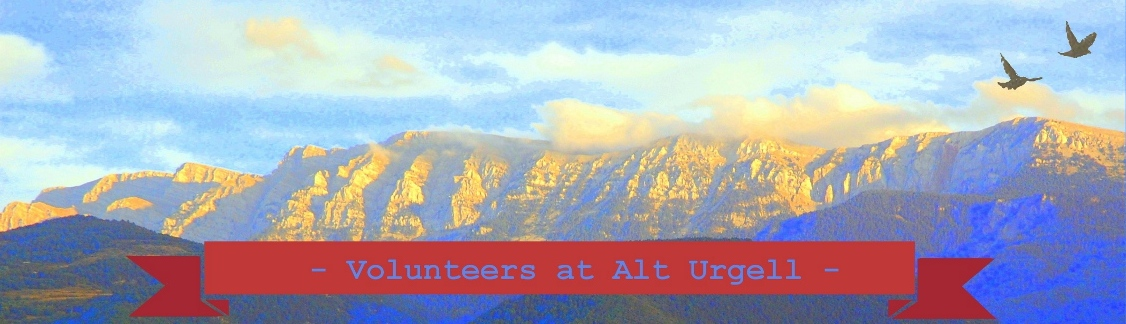 Volunteers at Alt Urgel