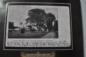 Koleksi museum Sukowidi, banyuwangi.