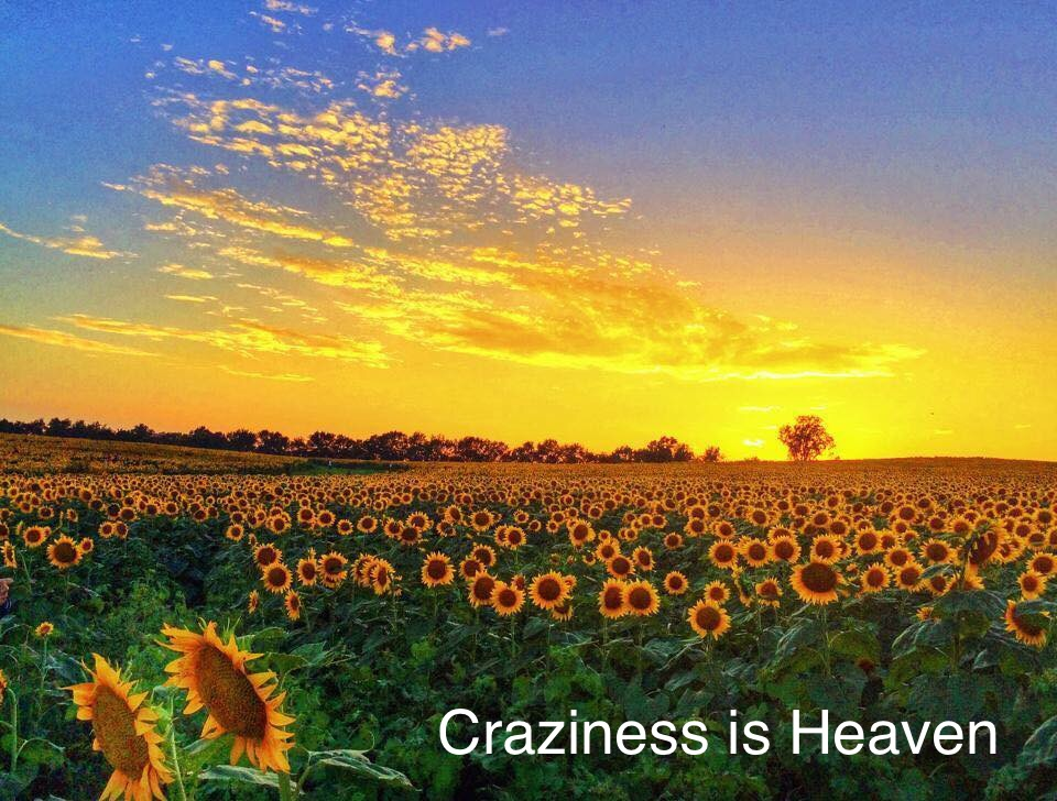 Craziness Is Heaven