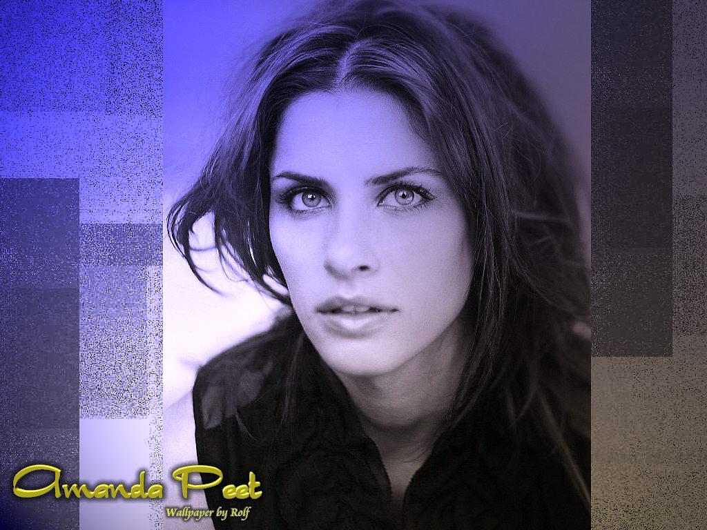 http://2.bp.blogspot.com/-n6JhuE_20Ww/TlYSOHIru7I/AAAAAAAAFUs/zEvxjMRnPJE/s1600/Hot+Amanda+Peet+Pictures.jpg