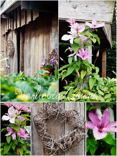 Holzhütte im Garten mit Dekoherz und hochrankender Clematis