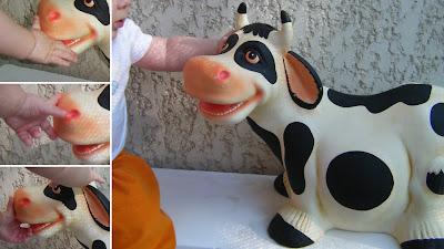 Miúdo fascinado com a vaca