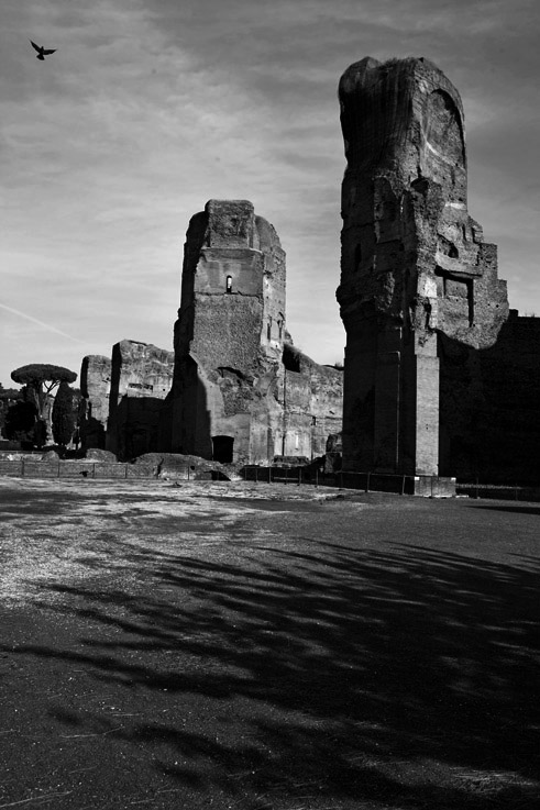 photo, Thermae Antoninianae, Terme di Caracalla, thermes de Caracalla, Baths, Roma, Rome, © dominique houcmant