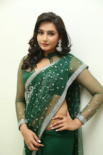 Actress Ragini Dwivedi Pictures in Saree at Jenda Pai Kapiraju Audio Launch 0057