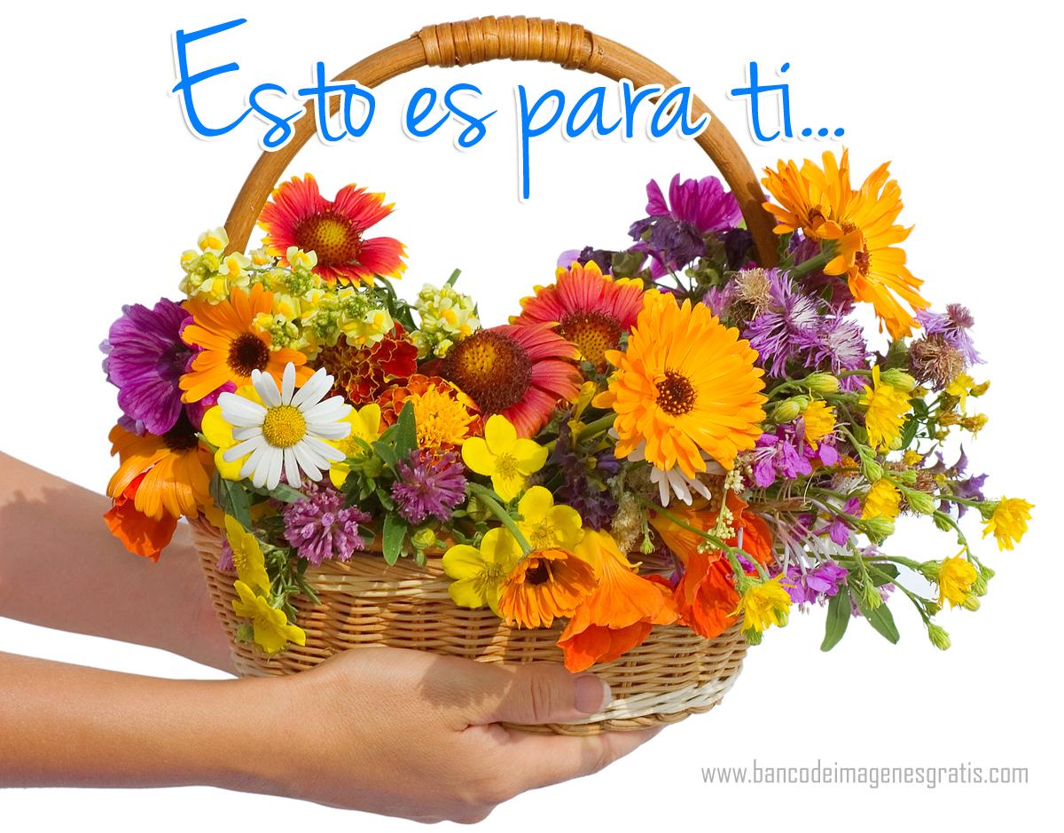 Regalo floral para compartir en las redes sociales - Esto es para ti