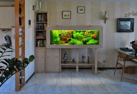 aquarium for living room decor