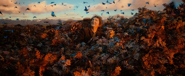 Baggins on tree with blue birds in The Hobbit: The Desolation of Smaug movie still image picture photo
