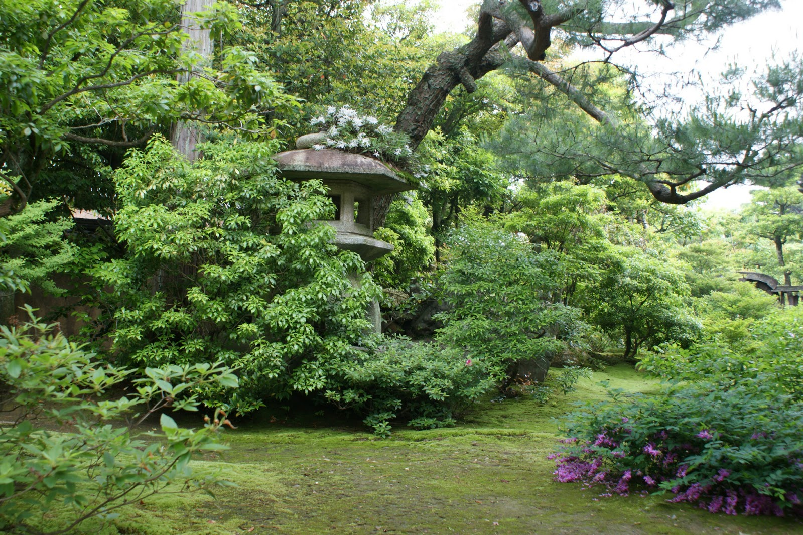 meditation in zen buddhism philosophy essay Free zen buddhism papers, essays, and research papers  the main teaching  of zen is that of zazen, or seated meditation, and that only through  1870,  received his philosophical training as a buddhist disciple at the great zen  monastery at.