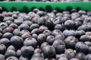 Frutos rojos, antioxidantes, mermeladas