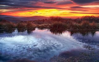 Brillante puesta de sol bosque & lago