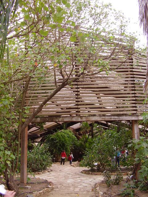 Cultura de sevilla aniversario del jard n americano for Jardin americano sevilla