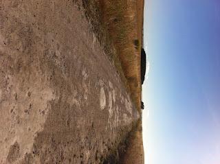 Dirt road limestone coast, south australia