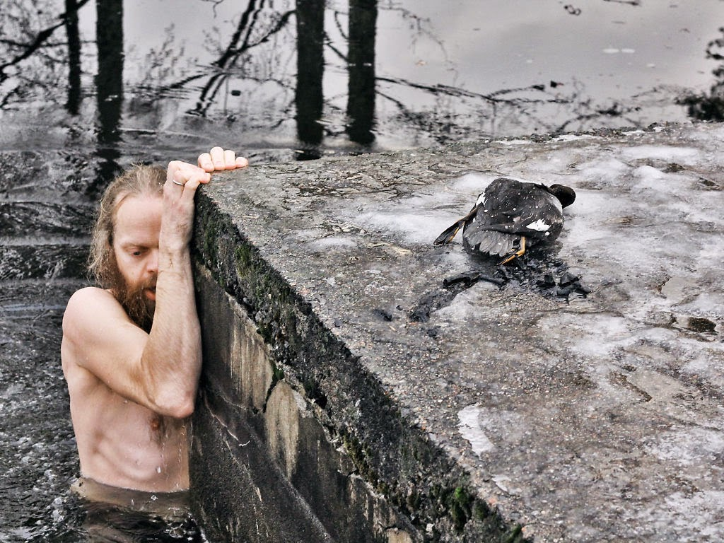 And jumped into the icy waters, risking his own life in order to save the helpless duck. - I Can't Believe What He Did To Rescue This Duck.