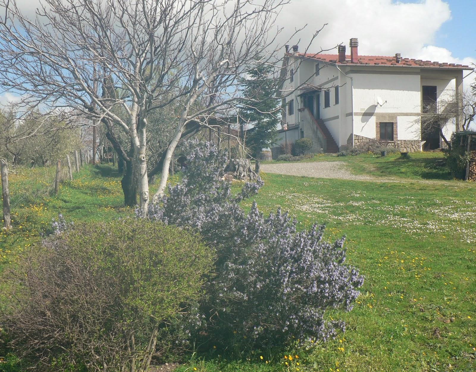 Benvenuta #Primavera #Toscana