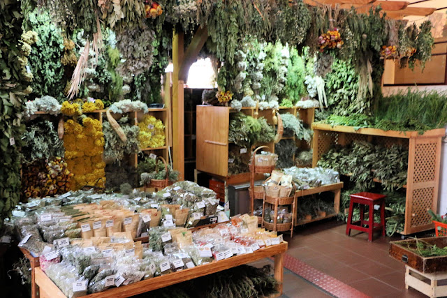 Mercado dos Lavradores, Funchal, Madeira, Kräuter und Gewürze