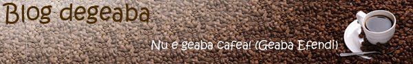 Blog degeaba