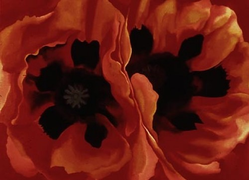 Famous Poppies Painting