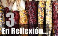 En Reflexión 3