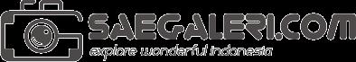saegaleri.com
