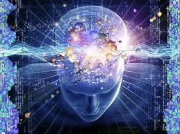 cerebro matrix pantallas verfractal vision percepcion mundo realidad ilusion