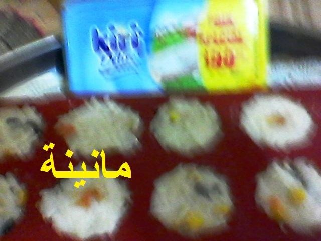 سلطة عـش الروز Photo0422.jpg