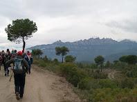 Pel Camí de la Serra amb Montserrat al fons