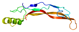 Image of Protein BMP4 PDB
