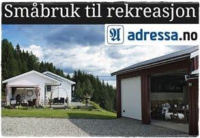 Bjørkli Søndre på adressa.no: