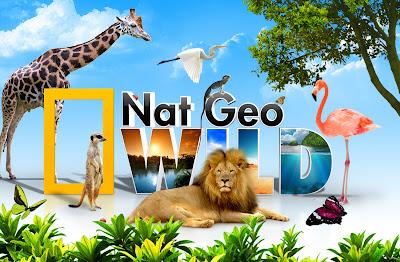 PSD Nat Geo wild (Hewan)
