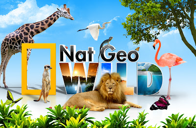 PSD+Nat Geo Wild PSD File PSD Nat Geo wild (Hewan)