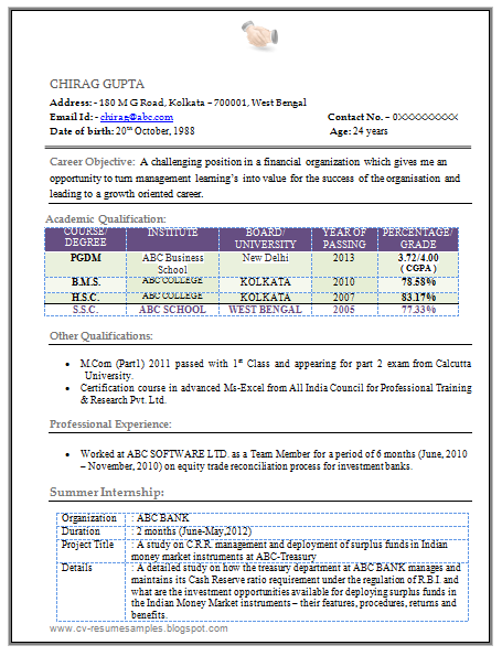 Example of MBA Finance Resume Sample for Fresher with Free Download in Word  doc.(2 Page Resume)
