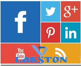 social networking profile widget